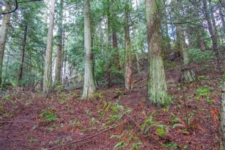 Photo 14: 2604 Yardarm Rd in : GI Pender Island Land for sale (Gulf Islands)  : MLS®# 863927