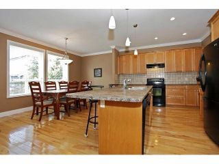 Photo 4: 19640 73B AV in Langley: Willoughby Heights House for sale : MLS®# F1413032