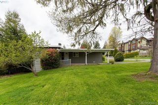 Photo 42: 6521 Golledge Ave in SOOKE: Sk Sooke Vill Core House for sale (Sooke)  : MLS®# 811620