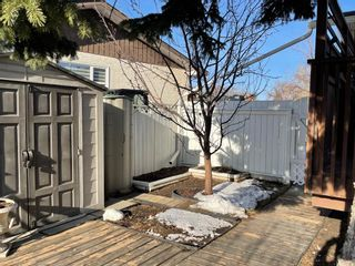 Photo 31: 119 WHITEVIEW Place NE in Calgary: Whitehorn Detached for sale : MLS®# A1097509