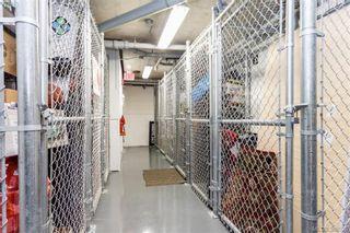 Photo 14: 309 982 McKenzie Ave in VICTORIA: SE Quadra Condo for sale (Saanich East)  : MLS®# 780785