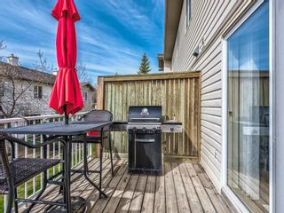 Photo 48: 158 Citadel Meadow Gardens NW in Calgary: Citadel Row/Townhouse for sale : MLS®# A1112669