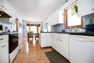 Photo 10: 309 Thibault Street in Winnipeg: St Boniface Residential for sale (2A)  : MLS®# 202008254