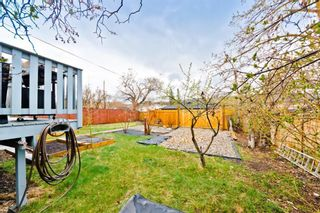 Photo 22: 4323 Bowness Road NW in Calgary: Montgomery Detached for sale : MLS®# A1144296