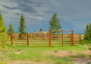 Photo 47: 370120 176 Street W: Rural Foothills County Detached for sale : MLS®# A1098259