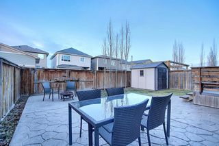 Photo 46: 1009 Prairie Springs Hill SW: Airdrie Detached for sale : MLS®# A1042404