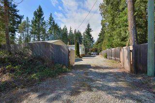 Photo 15: 6111 SECHELT INLET ROAD in Sechelt: Sechelt District House for sale (Sunshine Coast)  : MLS®# R2557718