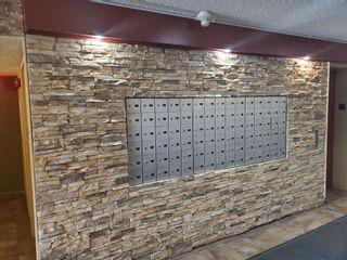 Photo 4: 322 3610 43 Avenue in Edmonton: Zone 29 Condo for sale : MLS®# E4230906