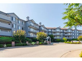 """Photo 1: 204 5375 205 Street in Langley: Langley City Condo for sale in """"Glenmont Park"""" : MLS®# R2500306"""