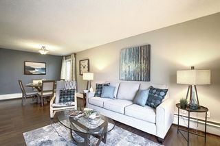 Photo 17: 303 130 25 Avenue SW in Calgary: Mission Apartment for sale : MLS®# A1023034