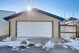 Photo 46: 253 Elgin Way SE in Calgary: McKenzie Towne Detached for sale : MLS®# A1087799