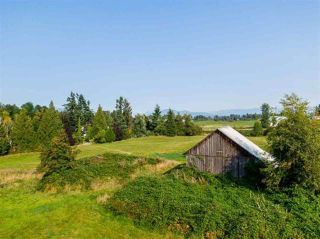 Photo 8: 5571 ROSS Road: Agri-Business for sale in Abbotsford: MLS®# C8036359
