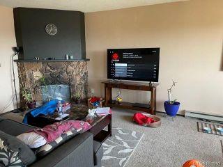 Photo 19: 527 Constance Ave in : Es Esquimalt Multi Family for sale (Esquimalt)  : MLS®# 881992