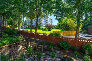 "Photo 18: 409 1350 VIDAL Street: White Rock Condo for sale in ""SEAPARK EAST"" (South Surrey White Rock)  : MLS®# R2616666"