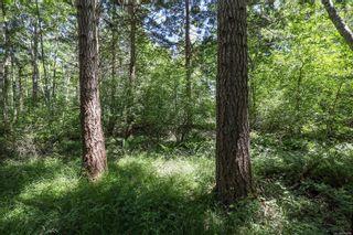 Photo 17: 1752 Little River Rd in : CV Comox Peninsula Land for sale (Comox Valley)  : MLS®# 878788