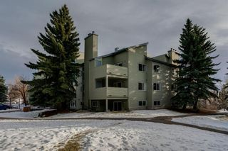 Main Photo: 4278 90 Glamis Drive SW in Calgary: Glamorgan Apartment for sale : MLS®# A1051418