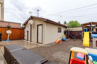 Photo 21: 123 Erin Woods Drive SE in Calgary: Erin Woods Detached for sale : MLS®# A1117498