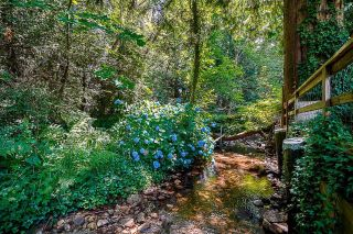 Photo 25: 4700 PHEASANT Place in North Vancouver: Canyon Heights NV House for sale : MLS®# R2590849