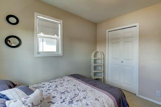 Photo 20: 55 Thornbird Way SE: Airdrie Detached for sale : MLS®# A1114077