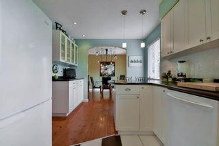 Photo 19: 20801 MCFARLANE Avenue in Maple Ridge: Southwest Maple Ridge House for sale : MLS®# R2065058