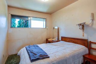 Photo 21:  in Edmonton: Zone 22 House for sale : MLS®# E4254166