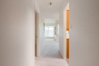 Photo 16: 404 1110 Oscar St in : Vi Fairfield West Condo for sale (Victoria)  : MLS®# 885074