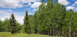 Photo 6: 5.78 Acres Parkins Road: Rural Foothills County Land for sale : MLS®# A1086953