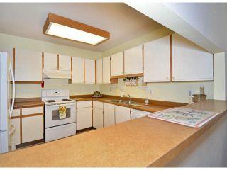"Photo 6: 213 15275 19 Avenue in Surrey: King George Corridor Condo for sale in ""Village Terrace"" (South Surrey White Rock)  : MLS®# F1425373"
