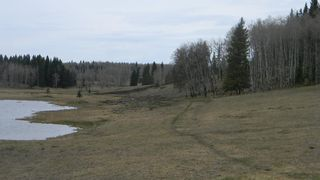 Photo 7: Corner of 178 Ave & 336 St W: Rural Foothills County Land for sale : MLS®# A1053038