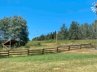 Photo 19: 20887 W 16 Highway in Smithers: Smithers - Rural House for sale (Smithers And Area (Zone 54))  : MLS®# R2596029