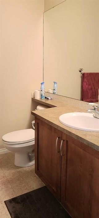 Photo 10: 36 Wiley Crescent: Red Deer Detached for sale : MLS®# A1082232