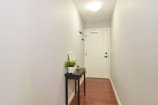 """Photo 19: 236 5660 201A Street in Langley: Langley City Condo for sale in """"Paddington Station"""" : MLS®# R2536541"""