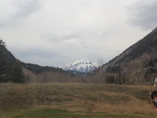 Photo 3: 14902 21 Avenue: Crowsnest Pass Residential Land for sale : MLS®# A1134722