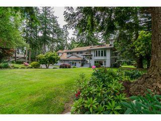 Photo 1: 17142 21 Avenue in Surrey: Pacific Douglas House for sale (South Surrey White Rock)  : MLS®# R2176109