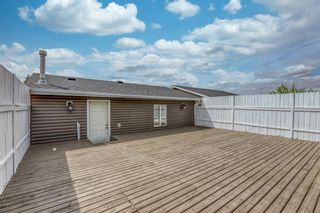 Photo 13: 5233 Martin Crossing Drive NE in Calgary: Martindale Detached for sale : MLS®# A1110063
