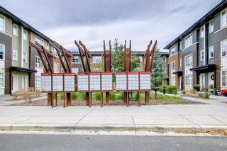 Photo 47: 123 Evansridge Park NW in Calgary: Evanston Row/Townhouse for sale : MLS®# A1152402