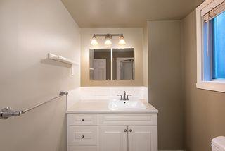Photo 30: 20489 DALE Drive in Maple Ridge: Southwest Maple Ridge House for sale : MLS®# R2360254