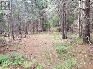 Photo 26: Lot 16 Concession 10 in Evansville: Vacant Land for sale : MLS®# 2095901