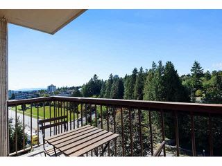 """Photo 14: 1004 320 ROYAL Avenue in New Westminster: Downtown NW Condo for sale in """"THE PEPPERTREE"""" : MLS®# V1142819"""