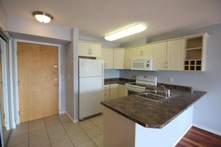 Photo 7: 302 17404 64 Avenue in Edmonton: Zone 20 Condo for sale : MLS®# E4254812