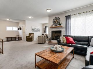 Photo 14: 44 MAITLAND Green NE in Calgary: Marlborough Park Detached for sale : MLS®# A1030134