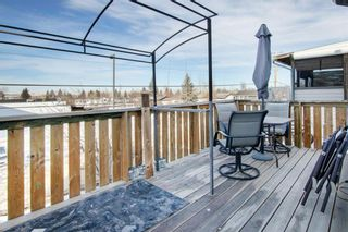 Photo 27: 66 Jensen Heights Place NE: Airdrie Detached for sale : MLS®# A1065376