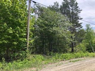 Photo 8: Lot Morganville Road in Morganville: 401-Digby County Vacant Land for sale (Annapolis Valley)  : MLS®# 202105239