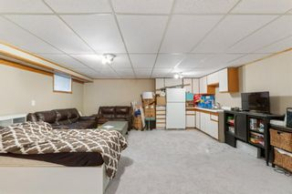 Photo 22: 423 Lysander Drive SE in Calgary: Ogden Detached for sale : MLS®# A1052411