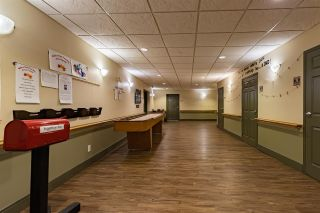 Photo 29: 228 8802 SOUTHFORT Drive: Fort Saskatchewan Condo for sale : MLS®# E4227312