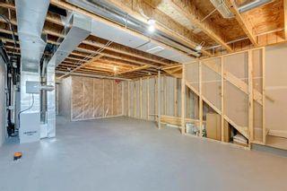 Photo 38: 209 Auburn Meadows Place SE in Calgary: Auburn Bay Semi Detached for sale : MLS®# A1072068