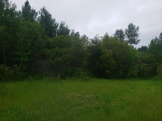 Photo 1: 831 Pelican Road: Rural Opportunity M.D. Rural Land/Vacant Lot for sale : MLS®# E4252453