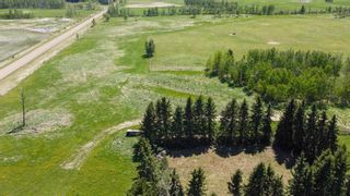 Photo 6: 454064 RGE RD 275: Rural Wetaskiwin County House for sale : MLS®# E4246862