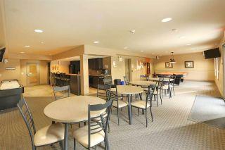 Photo 11: 106 1406 HODGSON Way in Edmonton: Zone 14 Condo for sale : MLS®# E4226462
