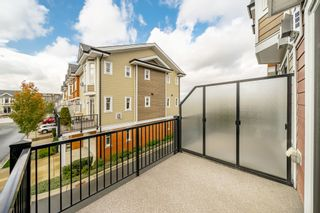 """Photo 40: 44 8068 207 Street in Langley: Willoughby Heights Townhouse for sale in """"Willoughby"""" : MLS®# R2410149"""
